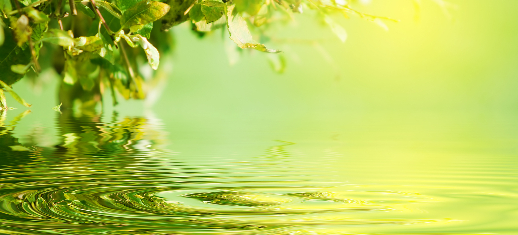 banner water